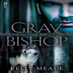 Review: Gray Bishop by Kelly Meade (Cornerstone Run Trilogy #2)